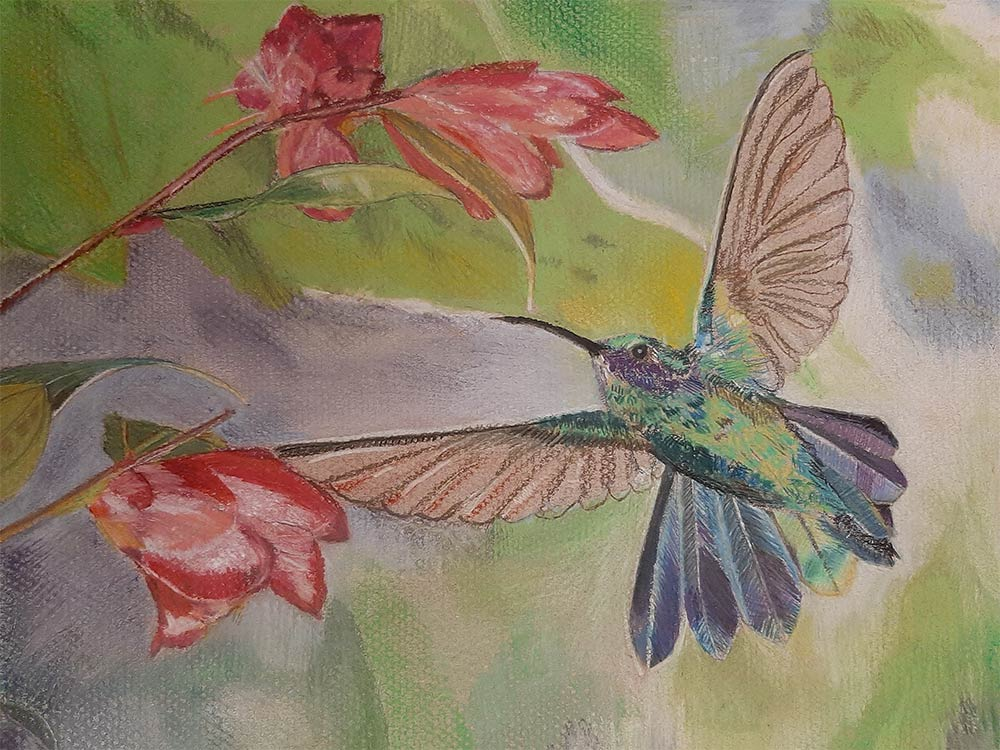 Humming Bird Painting by Leela Viswanathan